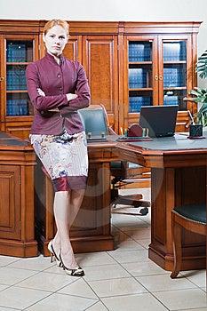Director Of Company Stock Photo - Image: 8753620