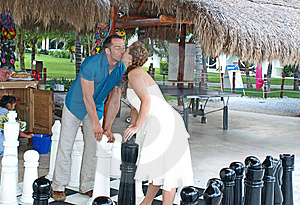 Wedding Chess Check Mate. Stock Photos - Image: 8775433