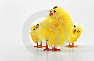 Easter Chickens Royalty Free Stock Image - Image: 8791216