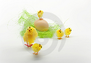 Easter Chickens Royalty Free Stock Photography - Image: 8791267