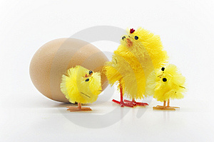 Easter Chickens Stock Photos - Image: 8791533