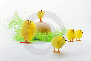 Easter Chickens Stock Photos - Image: 8791593