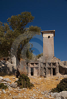 Olive Tree And Tombs, Xanthos, Turkey Royalty Free Stock Photo - Image: 8793295