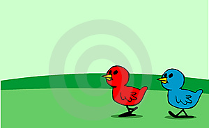 Red And Blue Chicks Walking Stock Photo - Image: 8796080