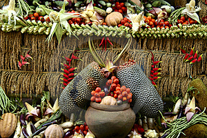 Harvest Festival Stock Image - Image: 882481