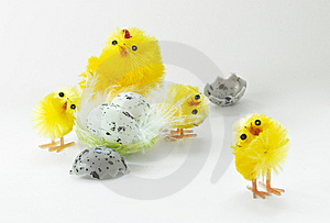 Easter Chickens Stock Images - Image: 8803074