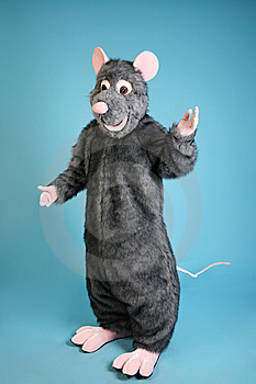 Rat Royalty Free Stock Photo - Image: 8805345