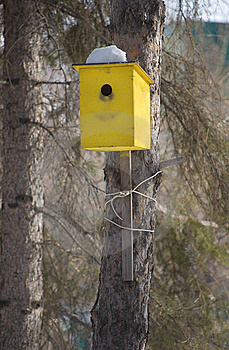 Yellow Birdhouse Royalty Free Stock Photos - Image: 8807348