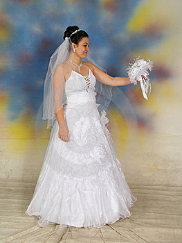 Pretty Bride In Wedding Dress Royalty Free Stock Image - Image: 8810006