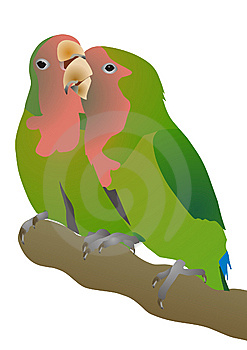 Pink-checked Parrots Agapornis Roseicollis Stock Image - Image: 8818441