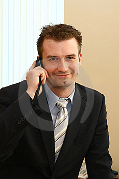 Businessman In The Office Royalty Free Stock Images - Image: 8819289