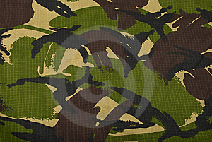 Camouflage Photo stock - Image: 8821940