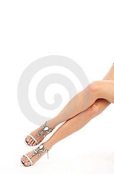 Beautiful Female Legs Royalty Free Stock Photo - Image: 8822305