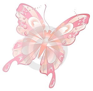 Abstract Butterfly Royalty Free Stock Photography - Image: 8825807