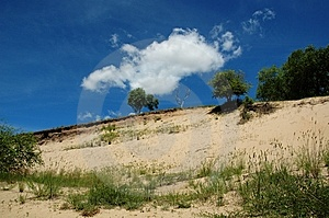 Prairie Royalty Free Stock Photos - Image: 8830148