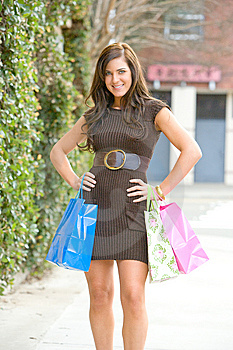 Attractive Young Woman Shopping Stock Images - Image: 8832354