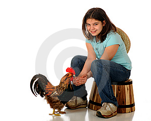 Chicken Feed Royalty Free Stock Photos - Image: 8833148