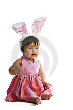 Baby Bunny Ears Stock Image - Image: 8833501