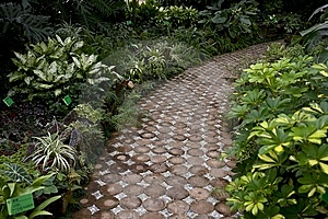 A Path Stock Image - Image: 8837991