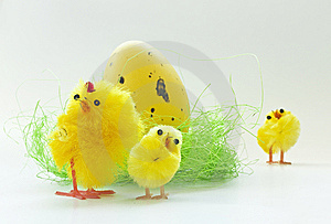 Easter Chickens Stock Photo - Image: 8842390