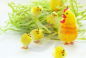 Easter Chickens Stock Photography - Image: 8848392