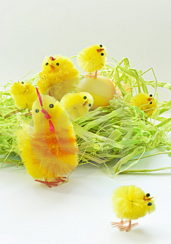 Easter Chickens Royalty Free Stock Photography - Image: 8848597