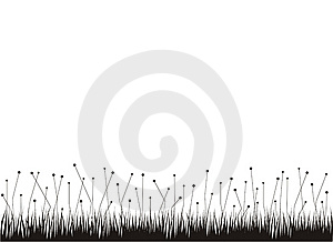 Grass With Pollen Royalty Free Stock Images - Image: 8849079
