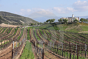 Country Manor Overlooking A Vineyard Royalty Free Stock Photos - Image: 8849938
