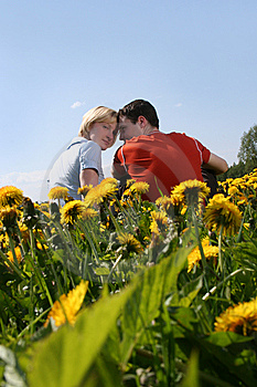 Summer Love Royalty Free Stock Images - Image: 8851649
