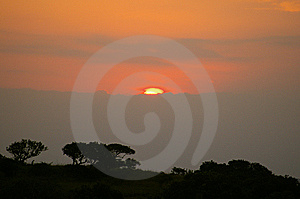 African Sunset Stock Images - Image: 8853774