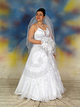 Pretty Bride In Wedding Dress Stock Photography - Image: 8858242