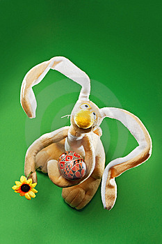 Funny Easter Bunny Stock Photography - Image: 8874842