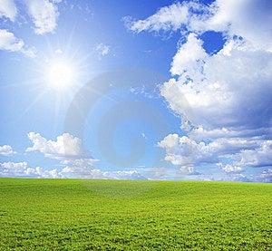 Field Stock Image - Image: 8878231