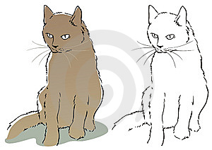 Cat Royalty Free Stock Image - Image: 8881566