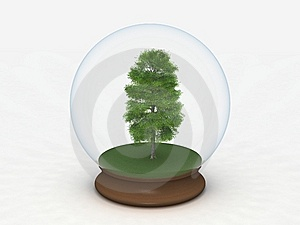 Tree In A Snow Globe Royalty Free Stock Photos - Image: 8882768