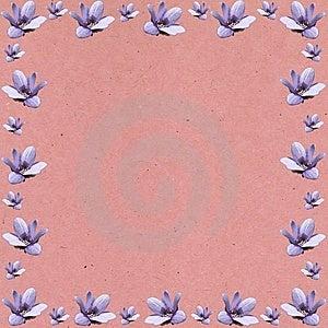 Pink Frame Stock Photo - Image: 8882860