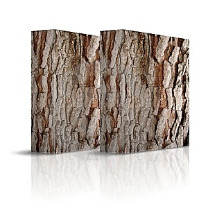Square Trunk Of Tree Stock Image - Image: 8883791