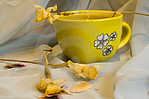 Cup Of Tea Stock Images - Image: 8889104