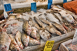 Fish For Sale Stock Image - Image: 8890251