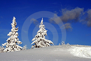 Together Through Snow Stock Photo - Image: 8894990