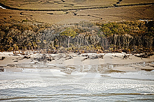 Aerial View Of Coastal Forest Hdr Stock Photography - Image: 8900162