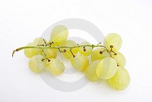Druiven Stock Fotografie - Afbeelding: 8901812