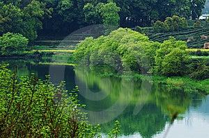 Beautiful China Stock Images - Image: 8907834
