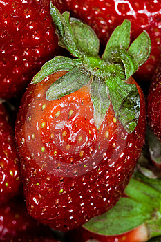 Strawberry Macro Royalty Free Stock Photo - Image: 8908765