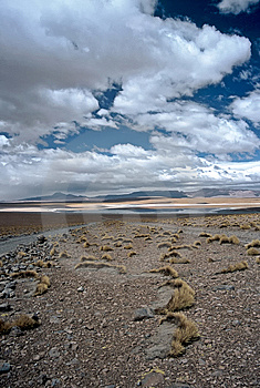 Wide Landscape In Bolivia,Bolivia Stock Photos - Image: 8910713