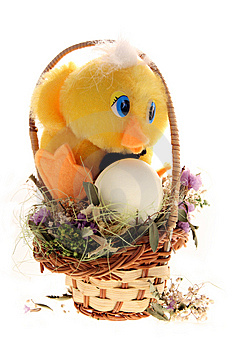 Chicken And Egg In The Basket Royalty Free Stock Photo - Image: 8912395