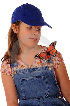 Learly Of The Monarch Royalty Free Stock Photo - Image: 8917795