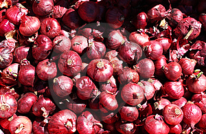 Red Onions Royalty Free Stock Image - Image: 8918636