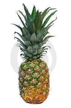 Pineapple Stock Photo - Image: 8924330