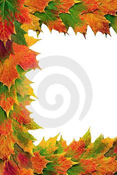 Maple Leaf Border Royalty Free Stock Images - Image: 8925809